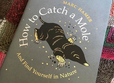 Book Club: How to Catch a Mole by Marc Hamer, Thursday 25 July 2019