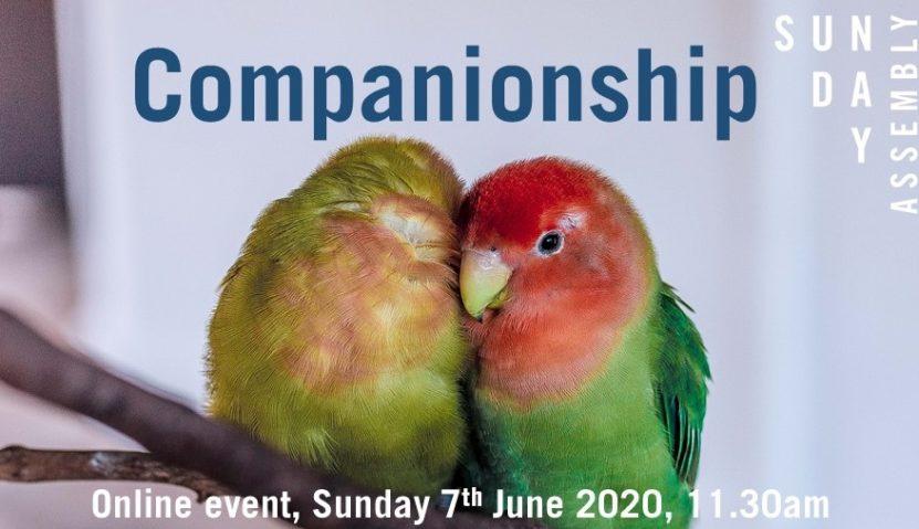 Sunday Assembly 7 June: Companionship