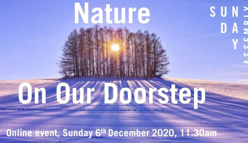 Sunday Assembly 6 December 2020: Nature On Our Doorstep